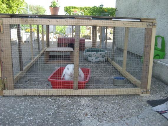 Montrez vos enclos page 2 hamsters cochons d for Construire une cabane a lapin exterieur