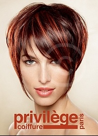 Privilege coiffure paris