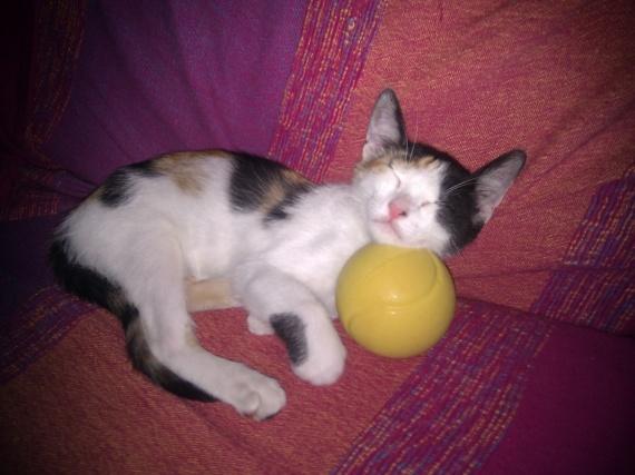Mona :)