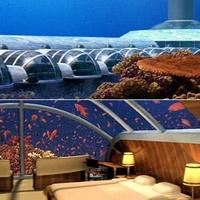 683491-vingt-mille-lieues-sous-les-mers-dans-les-iles-fidji