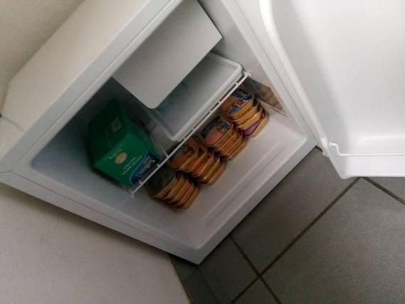 frigo pour le Chat