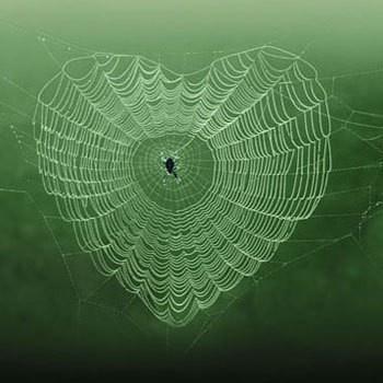 la nature a du coeur (jeu) - Page 2 Natural-hearts-152418768608315563_fv0bsfhv_f-img