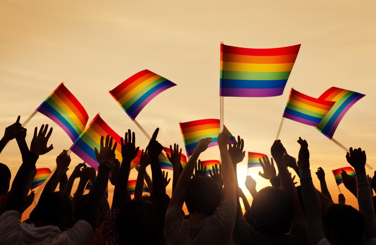 les gays de docti