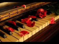 Giovanni Marradi - Garden of Dreams - YouTube