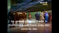 y2mate-com - stone_et_charden_made_in_normandie_lyrics_e-4oFbeGH1M_360p
