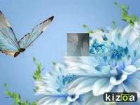 KIZOA-Movie-Maker-Xqulgcvw