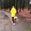 Promenade du chien.