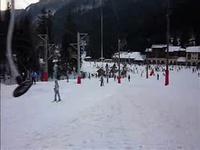 ski_web
