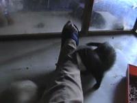 2008 08 09 - attaque des orteils