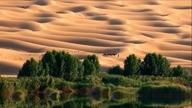 Armand Amar ~ Desert Peace